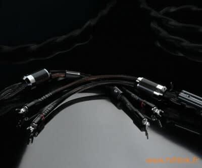 esprit gaia cables hp sur fond noir
