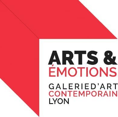 galerie arts et emotions art contemportain lyon